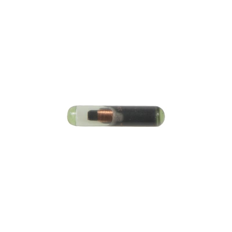 Transpondér immobilizéru ID48 (T6)